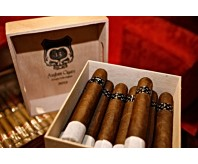Asylum 13 Robusto (Box of 50)