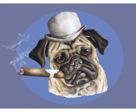 Pug smoking a cigar