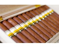 COHIBA GENIOS (BOX OF 10)