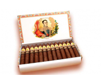 Bolivar - Petit Belicosos (Box of 25)