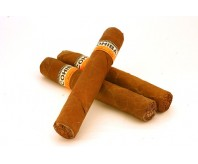 Cohiba Robusto (Single Cigar)
