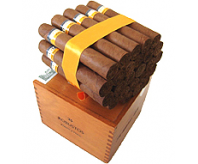 Cohiba - Robustos (Box of 25)