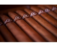 MONTECRISTO NO. 2 CIGAR FROM MONTECRISTO (Single Stick)  Rated No 1 Cigar of the Year 2013