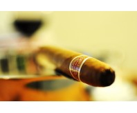 Romeo y Julieta Belicosos (Single Stick)