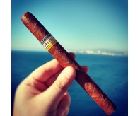 COHIBA ESPLENDIDOS (Single Stick)
